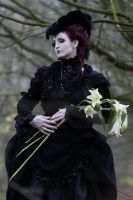 Stock - Lady with lilies baroque gothic portrait by S-T-A-R-gazer
