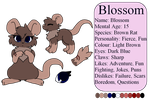 Blossom Reference Sheet by MinoesTheKitty