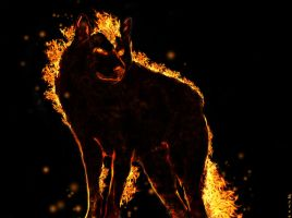 Flaming wolf by Ejlen