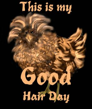 Good Hair Day Frizzle-Feathered Rooster by Sue2BlueEyes