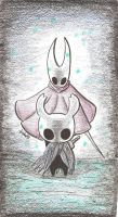 Hollow Knight and Hornet by rubeniracundo