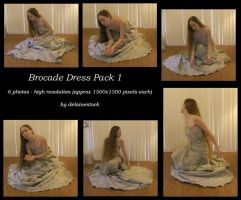 Brocade Dress pack 1 by delainestock