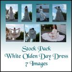 Stock Pack - Olden Day Dress by Gracies-Stock