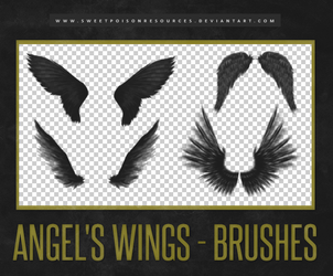 Angel's Wings - Brushes by sweetpoisonresources
