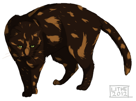 .:Tawnypelt:. by Lithestep