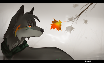 Fall by Bonday