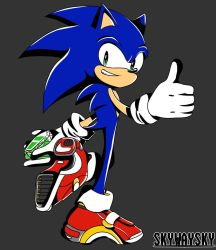 A Sonic to Remember by SkywaySky