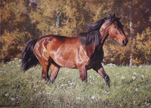 Mira walking. by Loginova