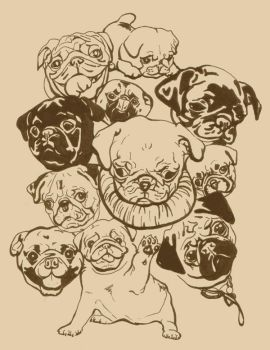 Pugs by krystylillustrates