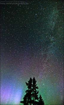 The Northern Sky by Sarah--Lynne