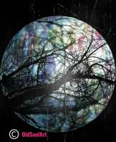 moon and trees...made from a few outdoor photos by OldSoulArt