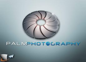 Palm Photography 3D logo by Infoworks