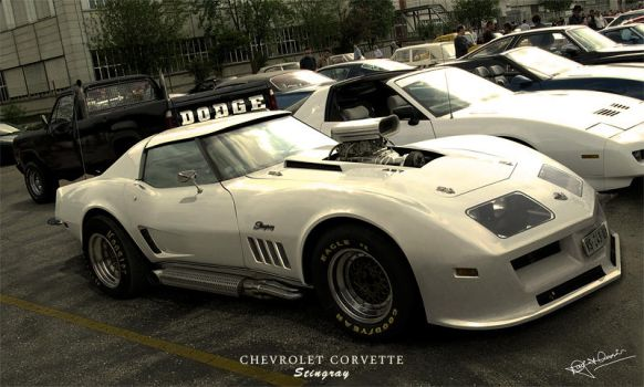 Chevrolet Corvette Stingray by hussain1