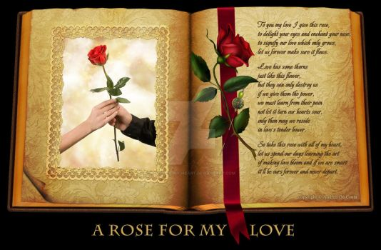 A Rose For My Love by Pieces-Of-My-Heart