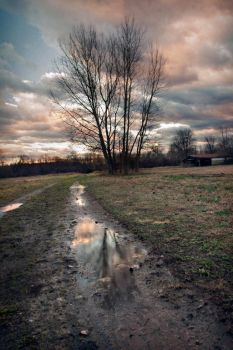 mud puddle by iridel