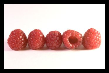 Raspberry Lineup by kalany