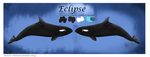 Eclipse Reference Sheet by NarniaOrca