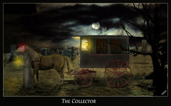 The Collectors Way by pepexx