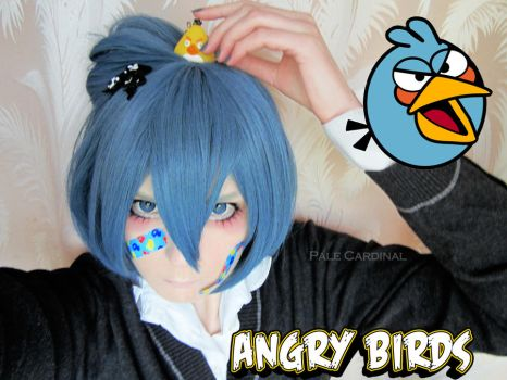 Angry Blue Bird test by palecardinal