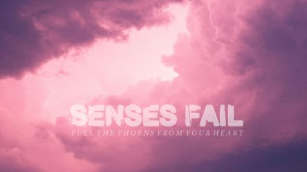 Senses Fail by paulogracioli666