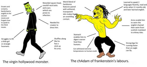 Frankenmeme. by william023