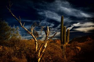 Arizona 3 by JCCJ756