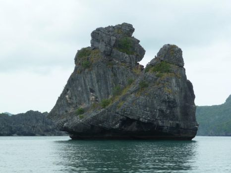 monkey rock by two-ladies-stocks