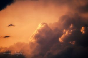 Fire in the sky by Vrogdish