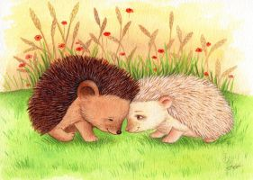 Hedgehog Love by IreneShpak