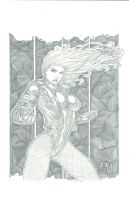 Black Canary Commission by Ace-Continuado