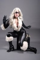 Black Cat 1 by MLeighS