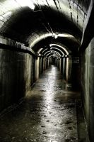 And down this tunnel we have? by ukwreckdiver