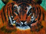 Blended Tiger by Felewin