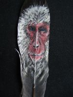 Ice Monkey Feather by JenTheThirdGal
