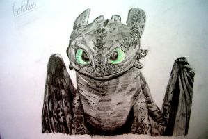 Toothless - How To Train Your Dragon by nath2897