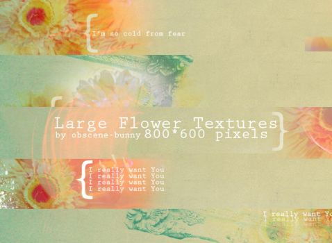 Large Flower Textures 05 by obscene-bunny