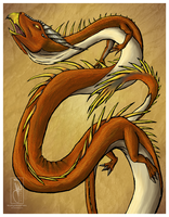 Serpent Dragon Colored by BlueEyesBlackTears