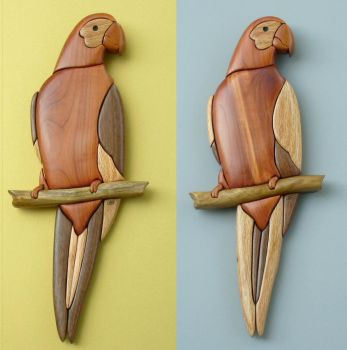 parrot variations by cl2007