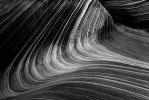 Study of Lines, III by coulombic