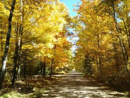 country road in autumn by julie-jeanette1123