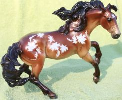 Breyer Nokota Horse - Fall in Love Stock 1a by Lovely-DreamCatcher