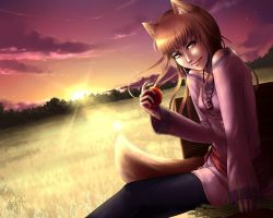 Spice and Wolf by DreamerWhit