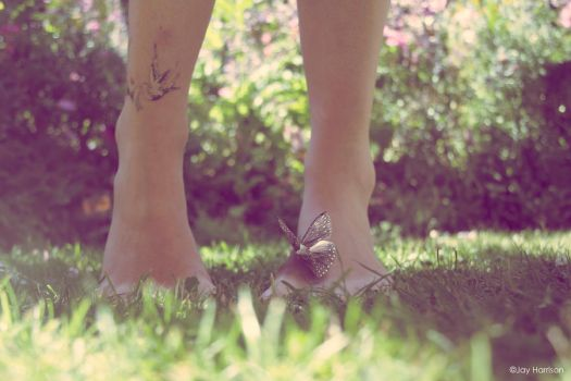 Butterfly toes. by YouAndMe-x