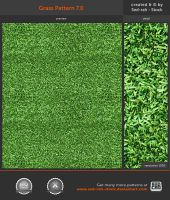 Grass Pattern 7.0 by Sed-rah-Stock