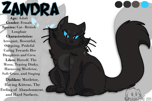 CT- Zandra Ref by TheCynicalHound