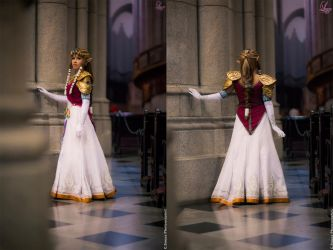 Zelda Twilight Princess Cosplay front and back by LayzeMichelle