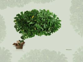 Think green 1600x1200 by Cechas
