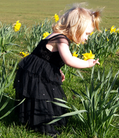 Little girls and daffodils by moonduster