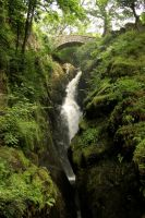 Aira Force by SkankinMike