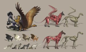 Mounts of Docerae by KaiserFlames